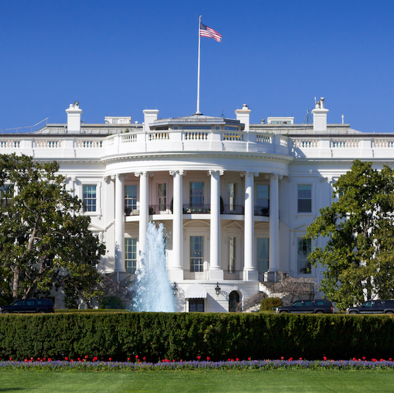 White House with Lawn
